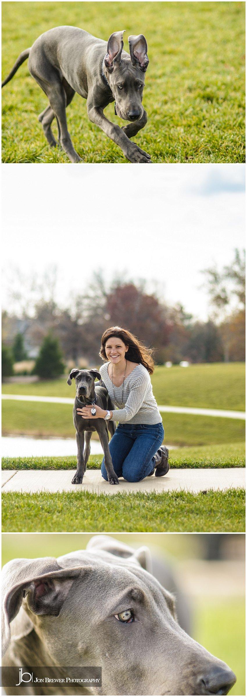 Becky & Luna - A Great Dane Puppy (3)